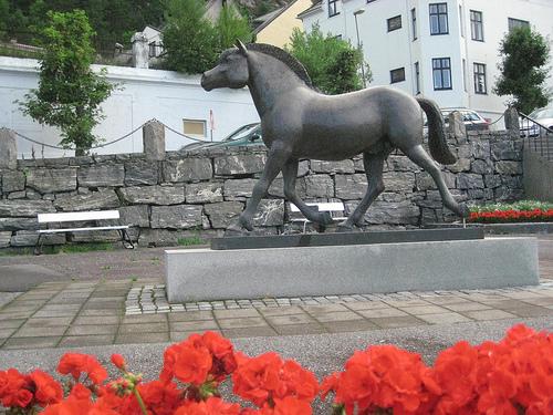 Fjord horse, Alesund, Norway