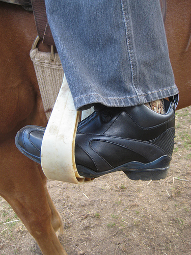 Horseback Riding Gear Review of Ariat Paddock Boots | Writing ...
