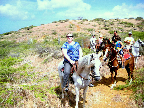Ride Paso Fino gaited horses on a Curacao Caribbean horseback riding vacation