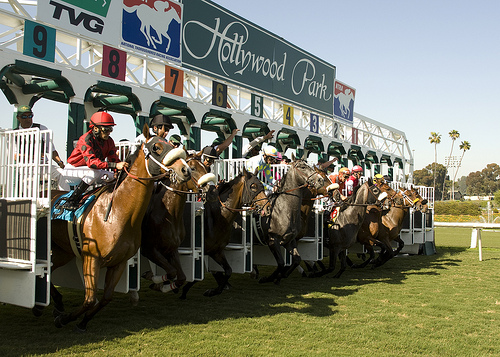 Hollywood Park offer day and night horse racing