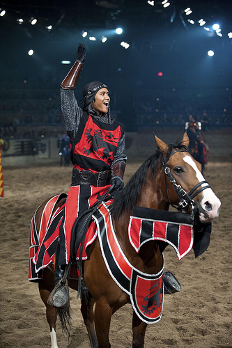 Come cheer on your favorite Knight on horseback at Medieval Times in Buena Park, California.