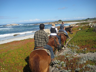 """Horseback riding Pebble Beach"""