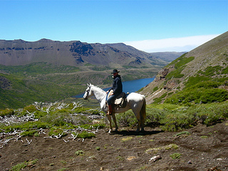 Ride Criollo horses at Estancia Ranquilco on a horseback riding vacation