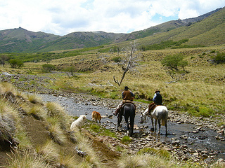 Watering the horses from Estancia Ranquilco during a horseback riding holiday in Patagonia, Argentina