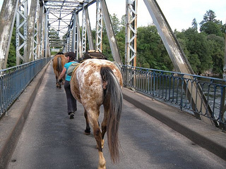 Bridge crossing on horse riding holiday in Dordogne, France