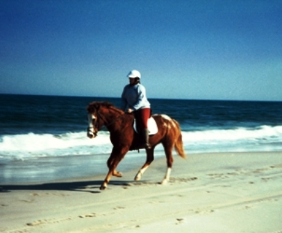 """Assateague Island horse & rider"""