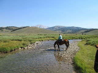 horse and rider, Shoal Creek, Wyoming