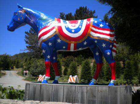 """Fourth of July"" horse"