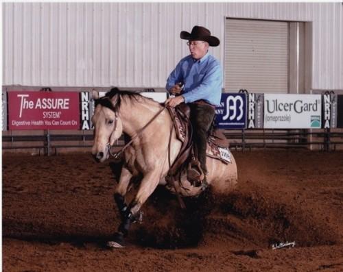"""""""Ben Balow"""" horse"""