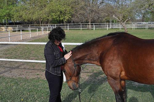 Melinda Folse, horse, Trace