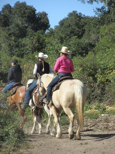 carmel valley trail rides, carmel valley ranch, horseback riding, trail ride