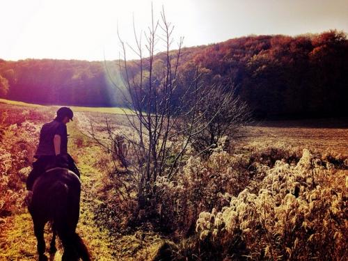 horseback riding vacation, romania horseback riding