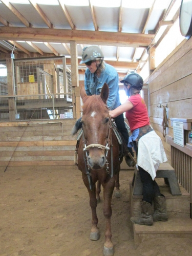 joint replacement, range of motion, horseback riding