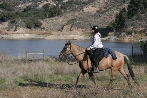 natrc, cachuma lake, california, horseback