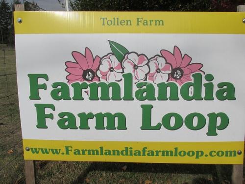 tollen farm, farmlandia farm loop