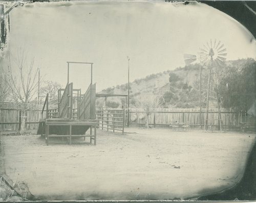 lindsey ross, tintype, cattle chute