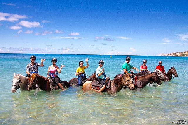 lucky stables, horseback riding vacation, beach ride, St. Martin