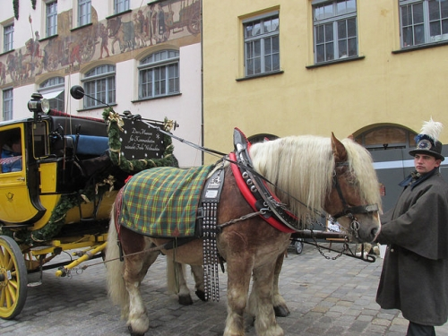 germany, horse, nuremberg