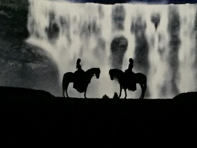 cavalia, odysseo, horses