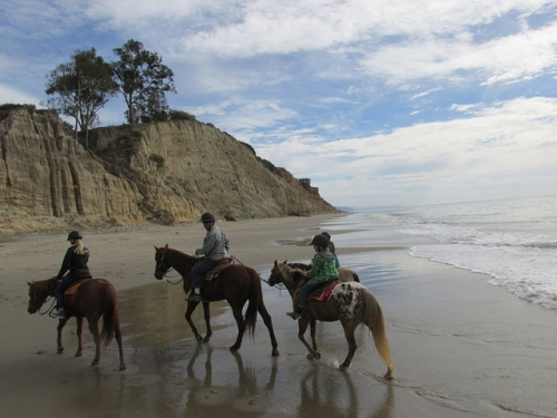 trail ride, beach ride, horseback ride