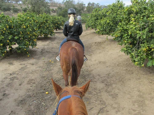 horseback riding vacation, santa barbara, trail ride