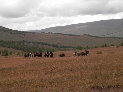 mongolian horse trek, mongolian horse holiday, mongolia horseback riding vacation, national geographic expeditions, mongolia, horseback riding