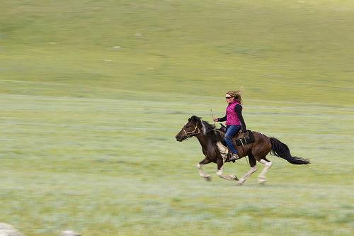 sarah cornellier, mongolia, horse trek, mandal mountain, horse, horseback riding