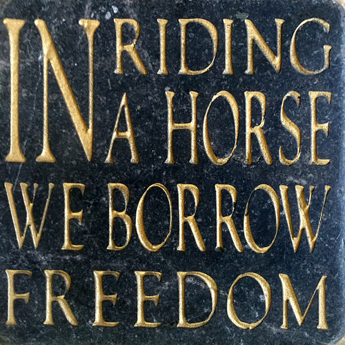 """in riding a horse we borrow freedom, helen thompson quote, wild horses, horse quote"