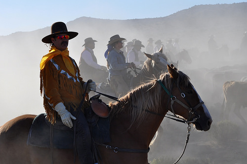 cowboy, horseback riding, reno cattle drive, nevada, horse, reno rodeo