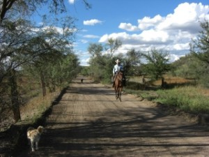 Phil Stover's Horseback Riding Vacation