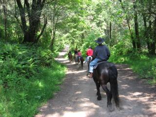 Horseback Riding Vacation at Five Brooks Ranch