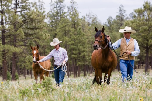 A horseback riding vacation at Hidden Meadow Ranch