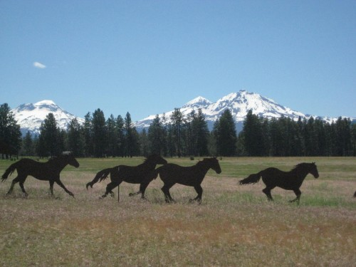Horseback Riding Vacation at Long Hollow Ranch, Sisters, Oregon