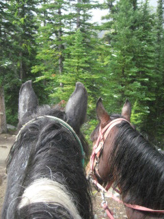 Oreo and Molson Take Us on a Horseback Riding Vacation to Lake Agnes Teahouse, above Lake Louise in Banff National Park