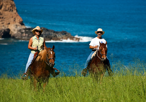 Horseback Riding Vacation with Hawaii Paso Finos on Kohala Coast