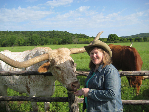 "Travel Writer Nancy D. Brown feeds Texas Longhorn ""Big Boy"" during a horseback riding vacation in Texas"
