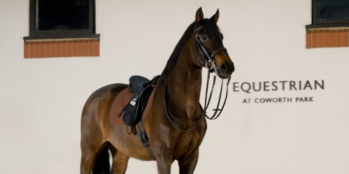 Coworth Park Equestrian Center offers everything for your UK horseback riding vacation