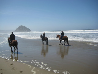 Come to California's Central Coast for a horseback riding vacation in Morro Bay