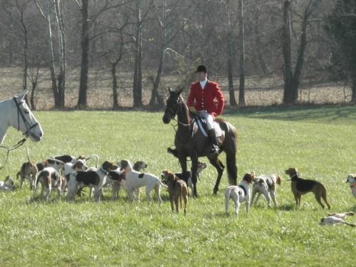 A horseback riding vacation in Lexington, Kentucky