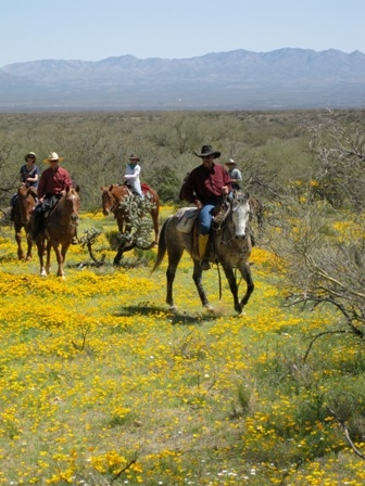 City Slickers take a horseback riding vacation at the Elkhorn Ranch in Arizona