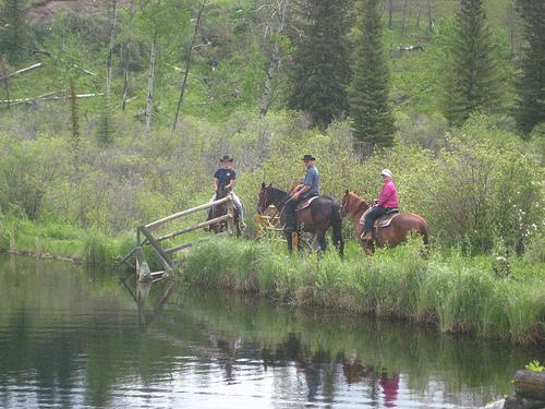 Guests on a horseback riding vacation at Big Bar Ranch in British Columbia, Canada
