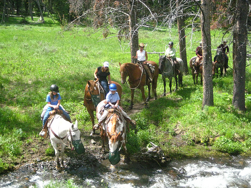 Sam Johnson and Sarah Merrell cross a creek on a Yellowstone Park horseback riding vacation