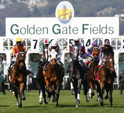 Take a horseback riding vacation to California's Golden Gate Fields