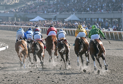 Explore California's horse racing history at Golden Gate Fields.