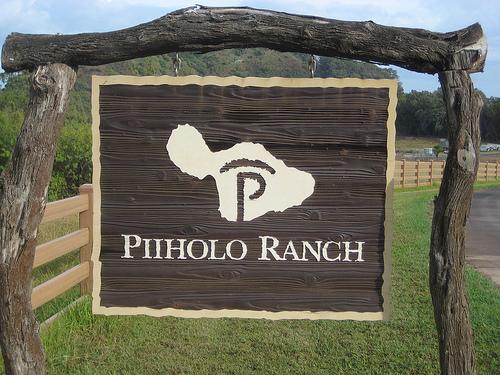 Enjoy a horseback riding vacation at Piiholo Ranch in Maui, Hawaii