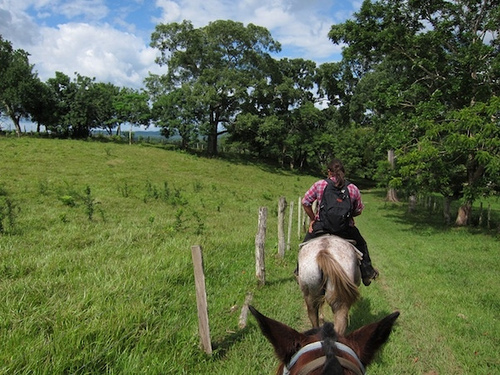 Santiago Juan of Hanna Stables takes riders on a horseback riding vacation in Belize.