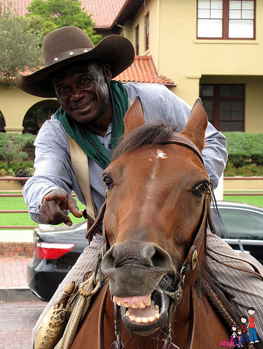 Visit with the horses and drovers at the Fort Worth Historic Stockyard cattle drive