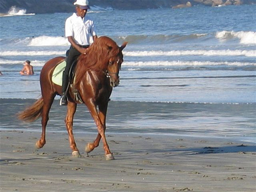 Horseback riding on the beach in Suzano, Brazil with Tonico of Sucandi Farm