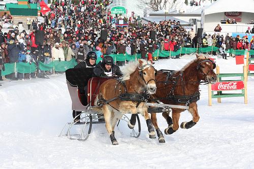 St-Huber Double Sleigh Race Carnival de Quebec
