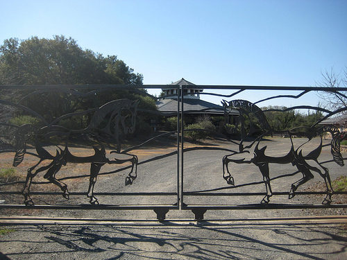 chalk hill estate, chalk hill winery, healdsburg, california, horse, gate